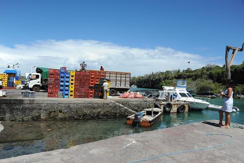 Puerto Ayoraの港
