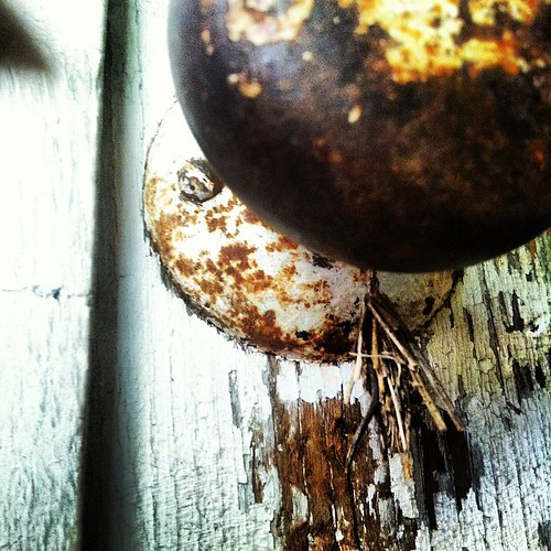 That thing made of pine needles or splinter beneath the doorknob is a tiny cocoon. Consider this a self portrait.