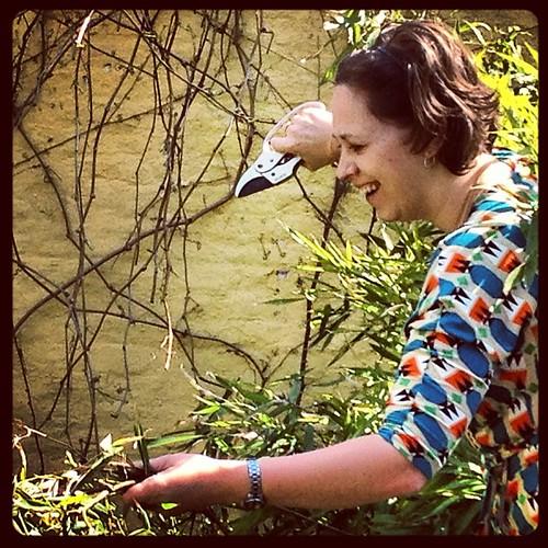 Mijn hoogstpersoonlijke tuinmadam... @buffieke