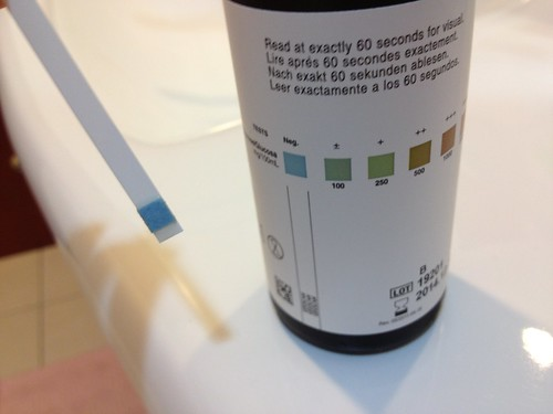 測尿糖的試紙