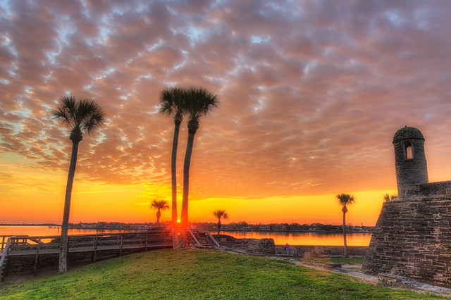 Castillo De San Marcos Sunrise through the Palms