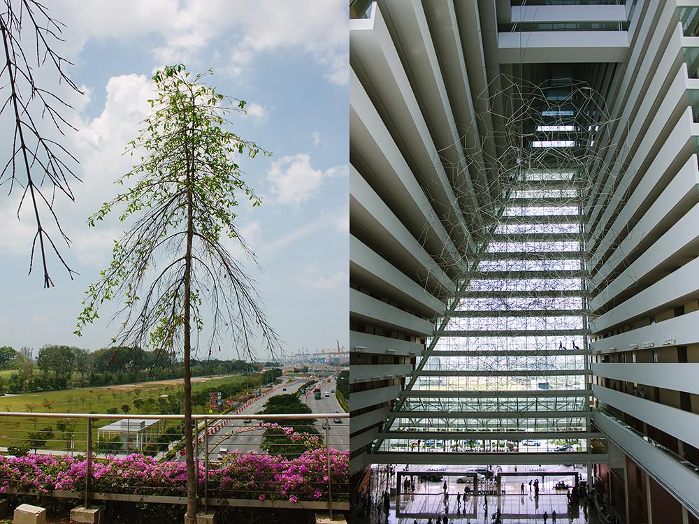 singapore_5_web