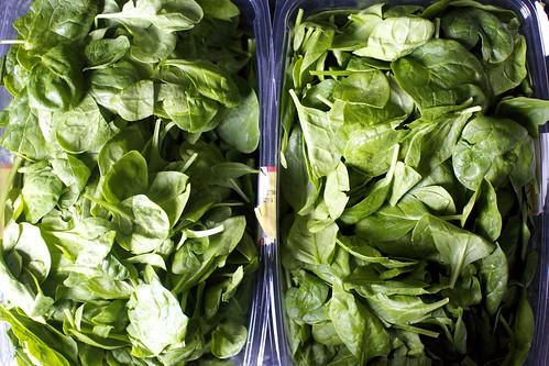 so much baby spinach