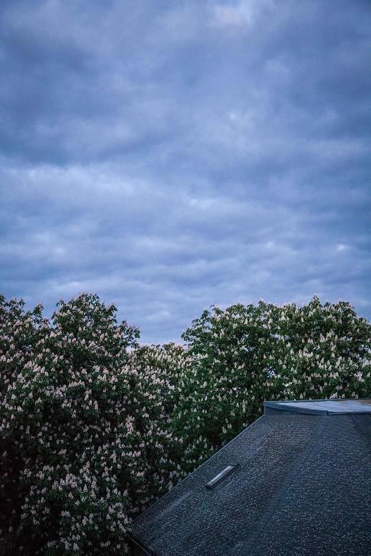 3/5/14 Looming Overhead
