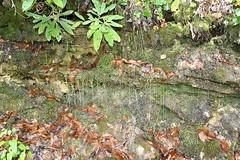 waterfall92