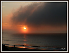Mist and sun light .
