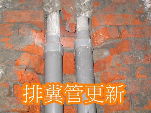 6排糞管漏水