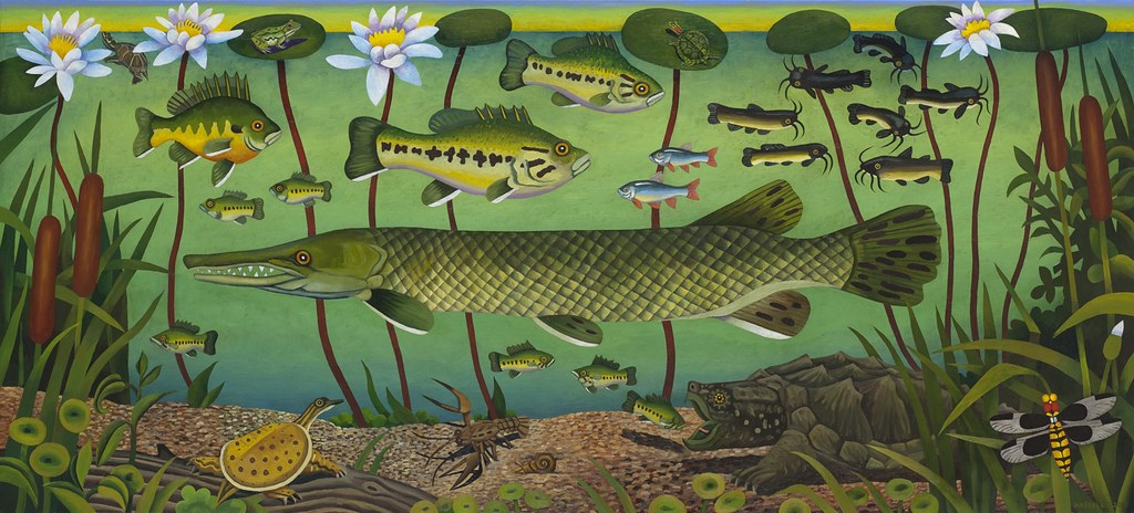 Billy Hassell, Freshwater Life