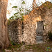 Late Afternoon at the Hacienda - Yucatan, Mexico por uncorneredmarket