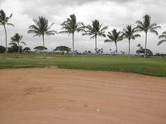 Hawaii Prince Golf Club 138