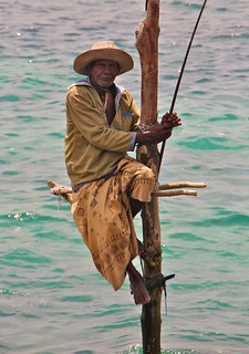 Stilt fisherman, Weligama, Sri Lanka