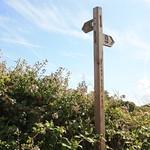 Offas Dyke  Walk Waymark