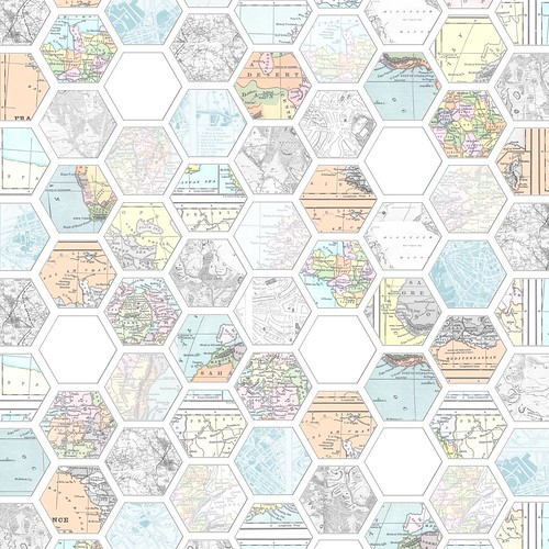 PNG_Map_hexagon_DARK_12_and_a_half_inch_300dpi_melstampz