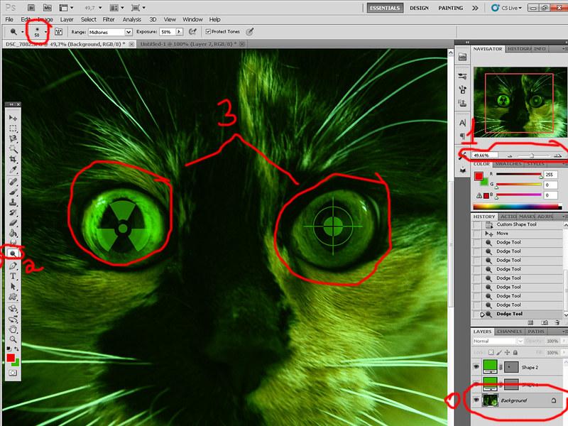 Зеленая виртуальная кошка 6908191736_8cc2238724_c