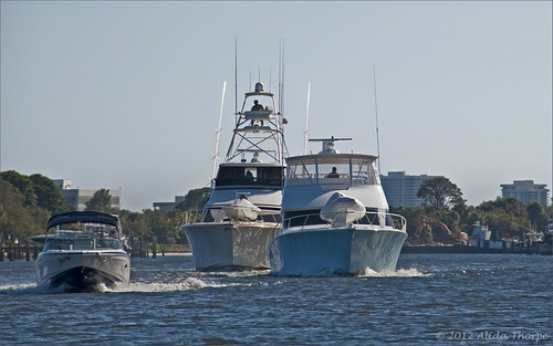 Florida boating by Alida's Photos