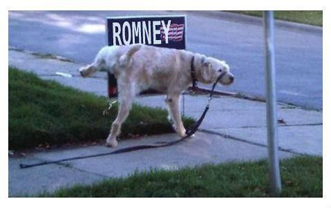 piss on romney