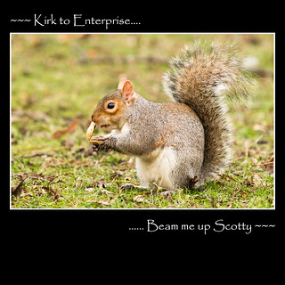 ~~~~~~~Kirk to Enterprise...Beam me up Scotty~~~~~~