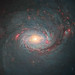Messier 77 Hubble Space Telescope