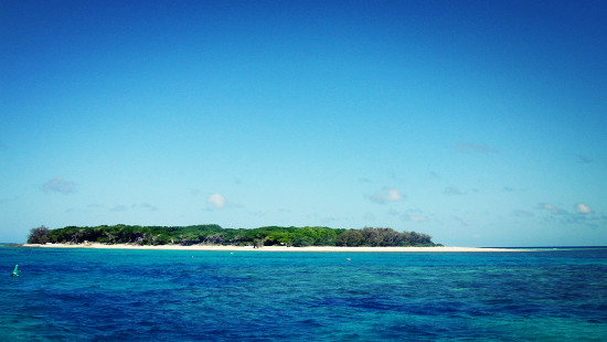 Great Barrier Reef Trip Day 2: Capricornia Cays National Park on Lady Musgrave Island