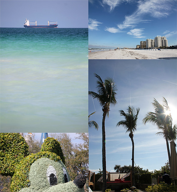Florida-2012