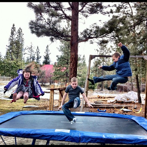 "Someone I talked to today. These three. Also! Matthew put up the trampoline! ""3-2-1 Ninja!"" is back in action. #marchphotoaday"