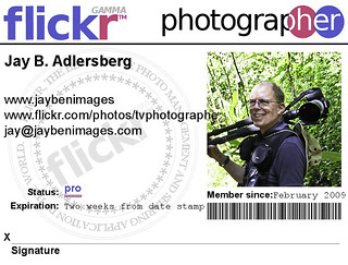 Flickr membership card