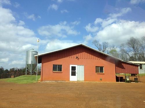 Trimble Farm, Big Sandy Texas