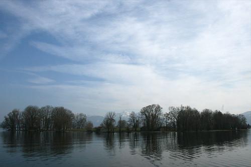 Krautinsel