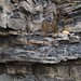 Small photo of Slate and shale by Aberystwyth castle