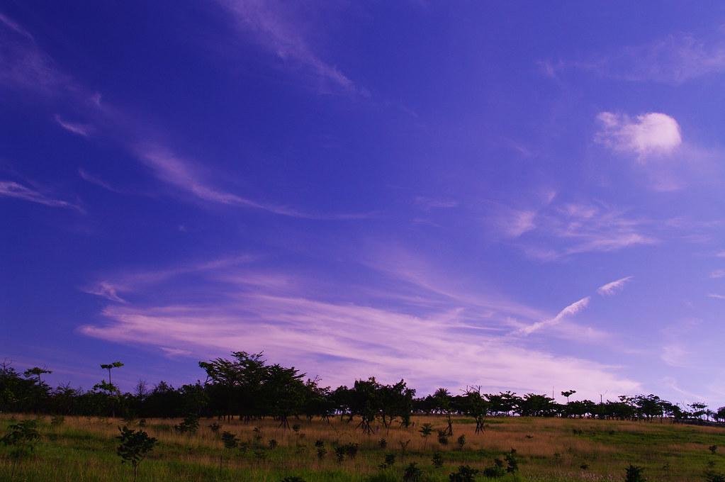 勞動節在家附近的公園試拍~天空相當晴朗