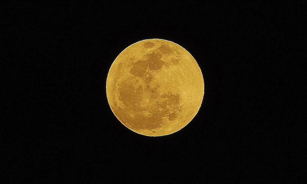 夜、月、花