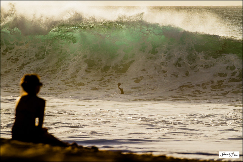 waimea-bay_shorebreak_zak-noyle_water-photographer.jpg