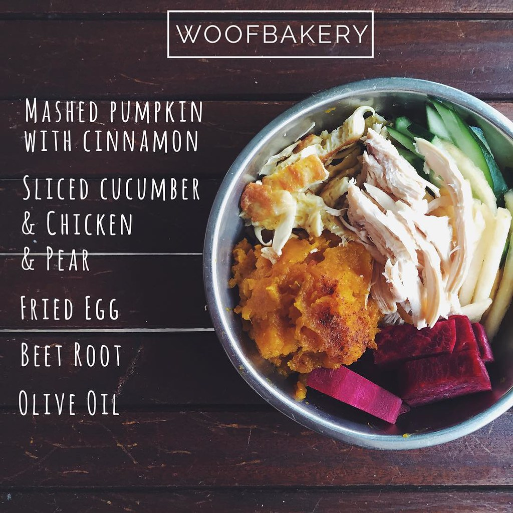 woofbakery Kuala Lumpur food bowls for dogs