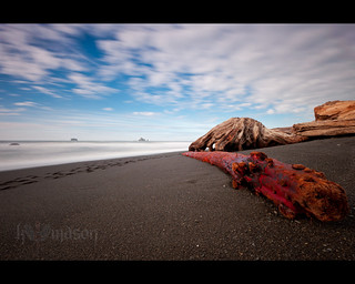 Red driftwood on Rialto Beach
