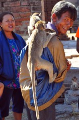 Monkeys on His Back