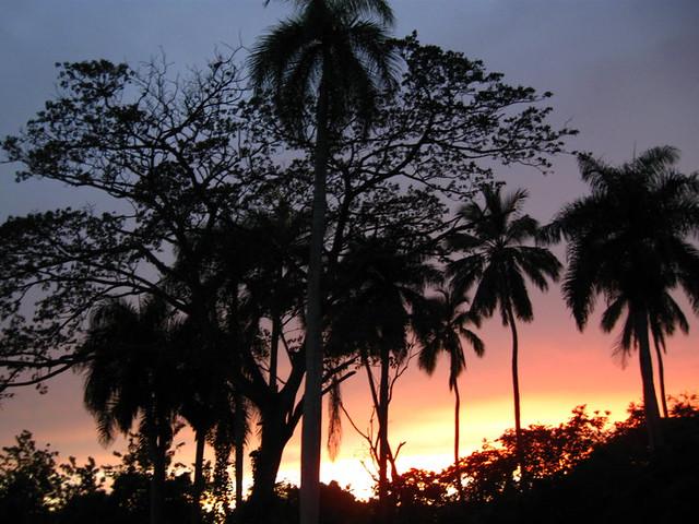 Partnervermittlung dominikanerinnen