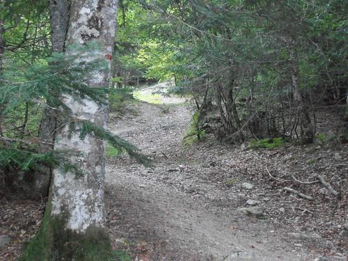 moundeilhs -septembre 2011 009