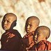 Novice monks - Shan state, Myanmar (Burma) by Luj Moarf