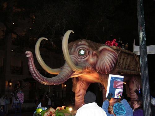 Pygmammoth