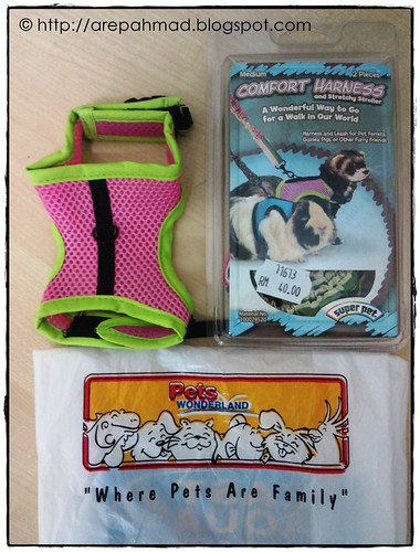 Harness for Prairie Dog