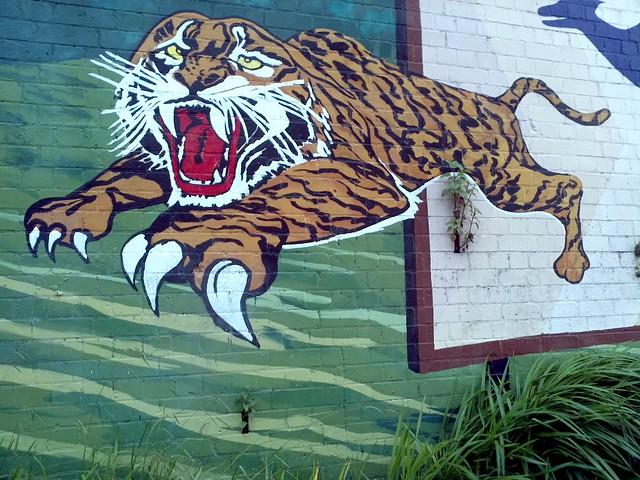 Leichhardt Tiger - Sydney Street Art