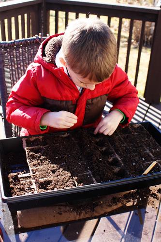 Nat-planting