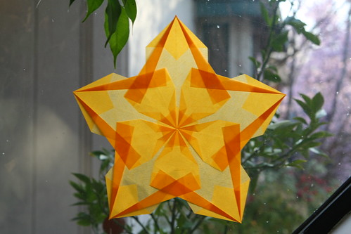 New Window Star
