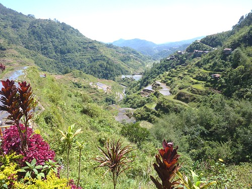 Luzon-Banaue (38)