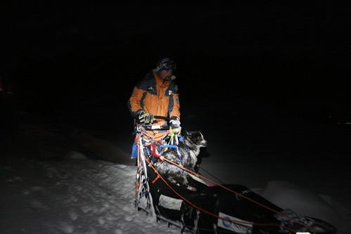 Harald kommer inn på sjekkpunkt Neiden2 kun få minutter bak Robert Sørli. Hunden i sleden er Anatsji.