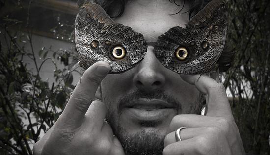 Imagen de Antifaz con Mariposas Búho en el Mariposario