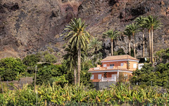 Valle Gran Rey - Finca
