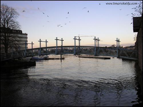 sylvester bridge