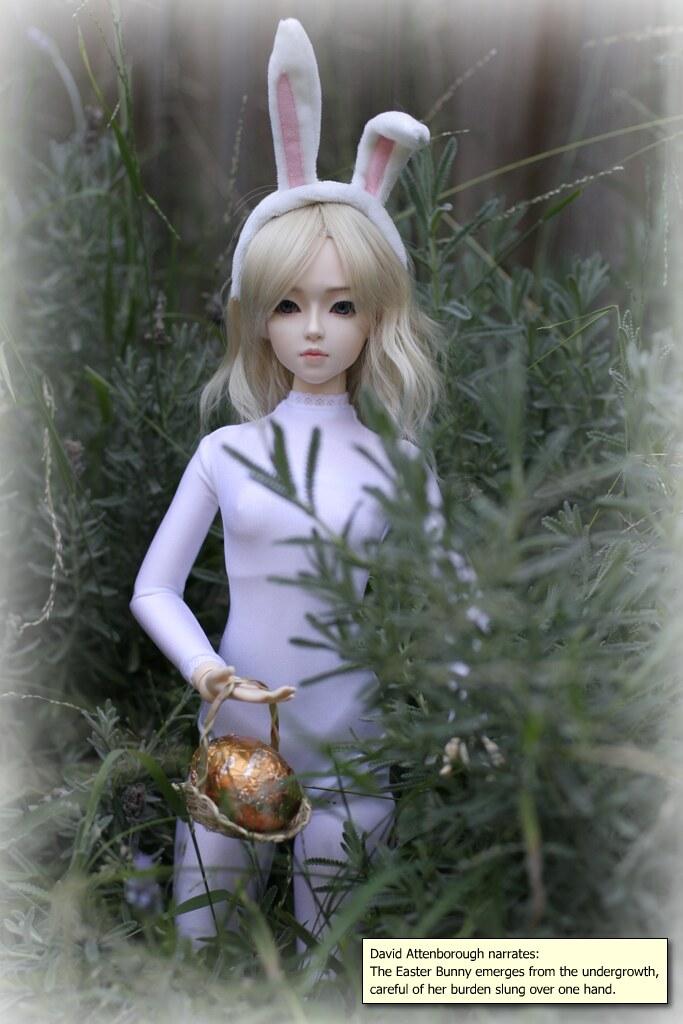 RabbitsTiga_01
