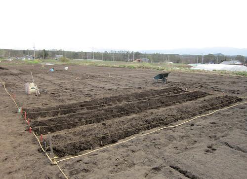 ジャガイモの畝作り 2012年5月1日16:14 by Poran111